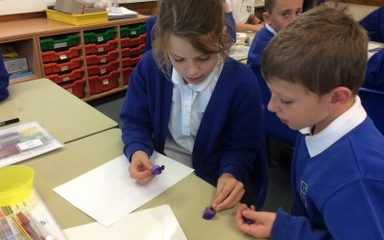 How do Plants Reproduce? Year 5 Investigates
