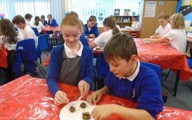 Investigating the Ancient Maya Diet in Year 5