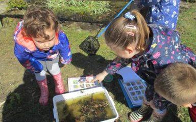 Nursery go pond dipping