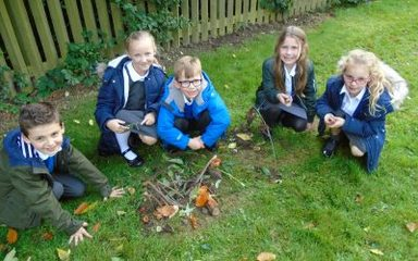 Year 3 Build Mesolithic Villages