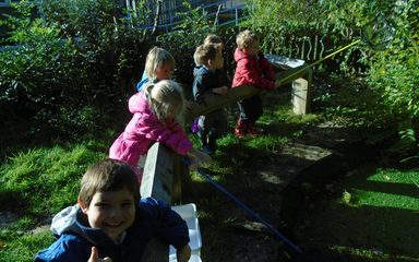 Nursery learn about the life cycle of a frog