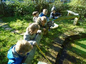 Nursery learn about the life cycle of a frog | Fellside