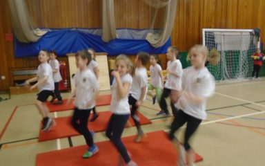 Year 4 Cluster Fitness Festival