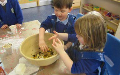 Nursery feed the birds