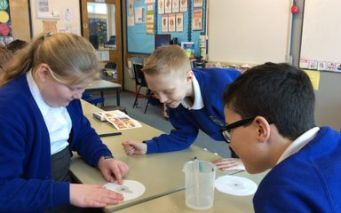 Science Week in Year 5