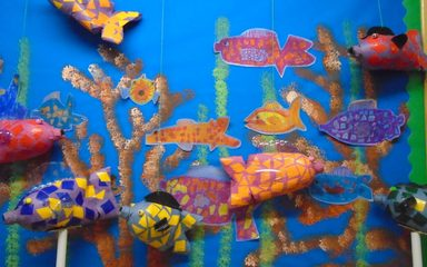 Year One's Fish on Display