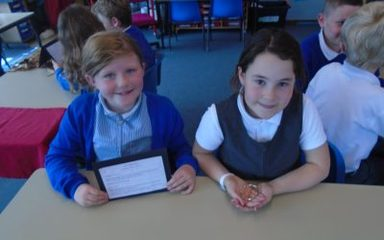 Museum of Roman Discoveries in Year 3