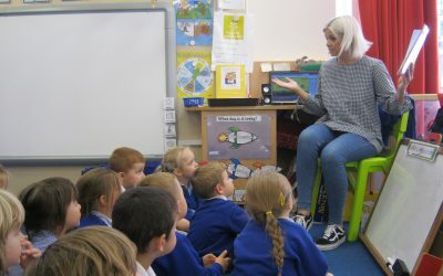 Our Mystery Reader